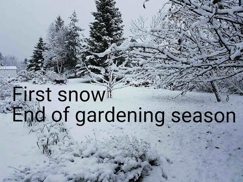 Gardening season is over for 2016 ( first snow )