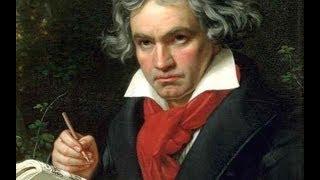 The Opening Salvo: Beethoven's String Quartet in F major - Christopher Hogwood & the Wilhelm Quartet