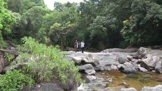 LOG HUT INSIDE FOREST .ERAVIKULAM NATIONAL PARK