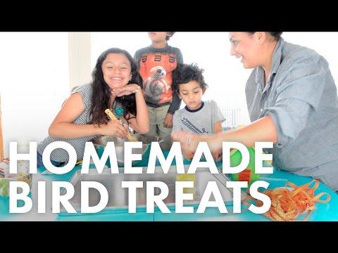 Homemade Bird Treats - Birdwatching for Beginners