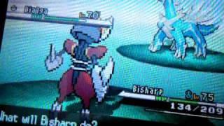 Pokemon Black And White How To Catch Shiny Dialga Or Shiny