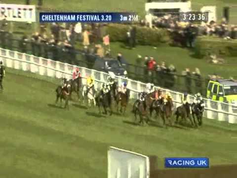 Vidéo de la course PMU THE CHELTENHAM GOLD CUP STEEPLE CHASE