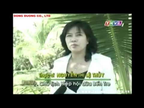 Kỹ thuật trồng cây dừa