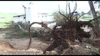 بالفيديو..هاذي هي الشجرة اللي طاحت على الناس كانو كيصليو الجمعة فســلا   بــووز