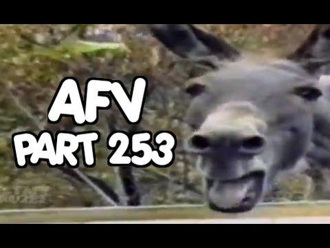 Home Videos - Part 253