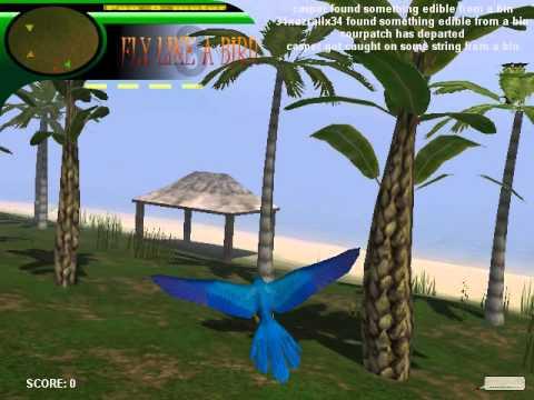Mmo fly like a bird 4