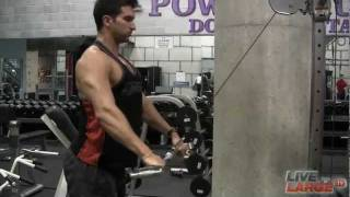 Back Exercise: Straight Arm Lat Pulldown
