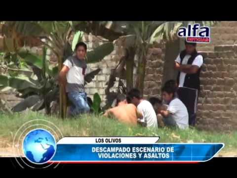 ALFA NOTICIAS - DESCAMPADO ESCENARIO DE VIOLACIONES Y ASALTOS