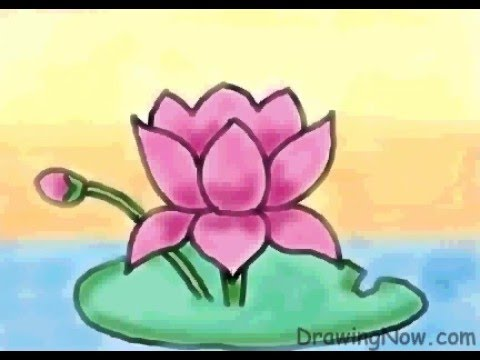how to draw lotus leaf