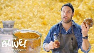 Brad Makes Miso Paste   It's Alive   Bon Appétit