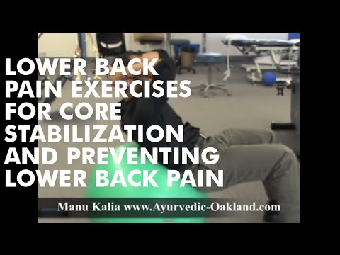 Manu Kalia - Core Stabilization Exercises