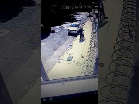 Vídeo Vídeo: Ladrão toma bicicleta na cara dura de pessoa que saía de prédio