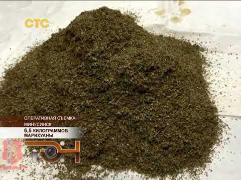 6,5 килограммов марихуаны