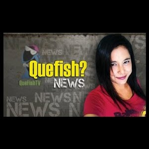 Quefish? NEWS