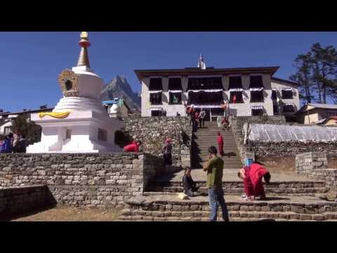 Trekking / Everest base camp trekking
