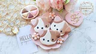 How to make TOO FACED MAKEUP PALETTE COOKIES ~ Clover the Corgi Cookies