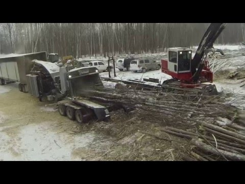 Bandit 3590XL 1,200 HP Whole Tree Chipper Nelson Forest Products Testimonial