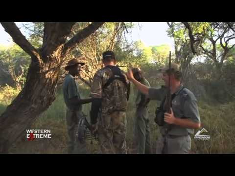 Hunting Legends bowhunting a Bluewildebeest