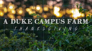 A Duke Campus Farm Thanksgiving video