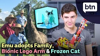 Teen's Bionic Lego Arm, Cat Survives Being Frozen & a Family's Pet Emu – Today's Biggest News