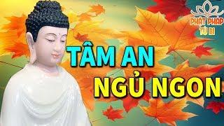 Mỗi Tối Trước Khi Ngủ Bỏ Ra Ít Phút Nghe Phật Dạy Giúp Tâm Thanh Tịnh  Ngủ Ngon Ngủ Sâu Hơn
