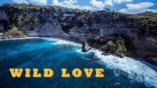 PIKA - WILD LOVE (Grey Killer prod.) / ПИКА - ДИКАЯ ЛЮБОВЬ