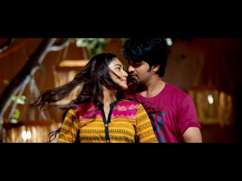 Dikkulu-Choodaku-Ramayya-Movie---Dhintana-Dhintana-Song---Naga-Shaurya--Sana-Maqbool