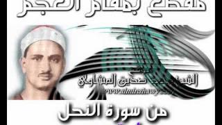 Muhammed Sıddîk el-Minşâvî-Muhtelif Kesitler-Acem Makamı