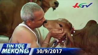Bỏ vợ con để…sống cùng bò | TIN TỨC MEKONG - 30/9/2017