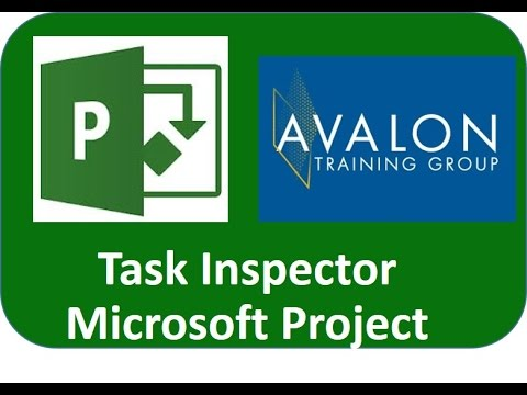 Task Inspector for Project Professional