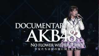 ドキュメンタリー11