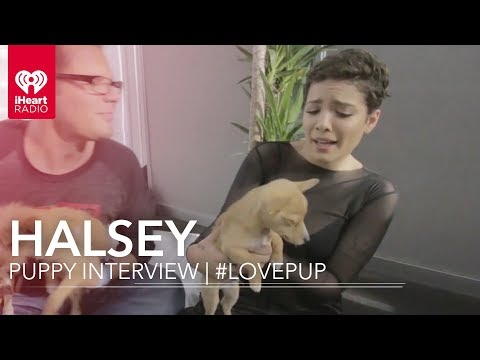 Halsey Puppy Interview | #LovePup with Johnjay