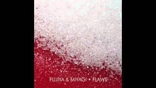 Fujiya & Miyagi - Flaws