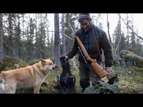 U potrazi za smislom lova