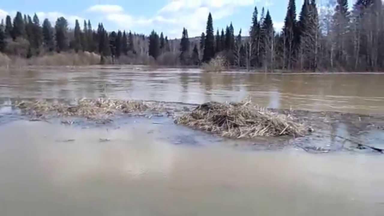Река барзас кемеровская область рыбалка
