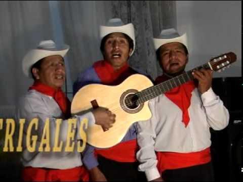 12 Trío Los Trigales - Este mundo infiel