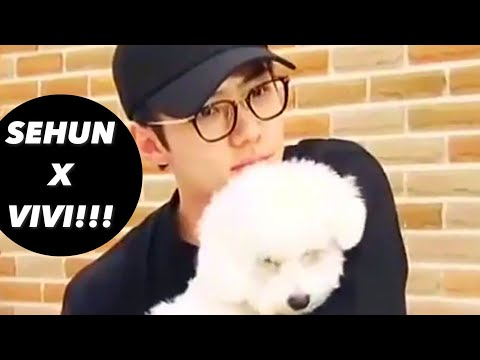 EXO SEHUN AND VIVI CUTE MOMENTS