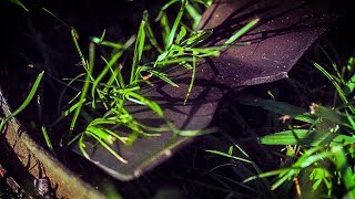how-lawn-mower-blades-cut-grass-at-50000-frames-per-second-smarter-every-day-196.jpg