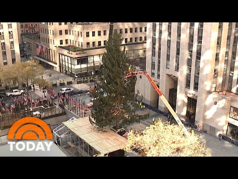 Rockefeller Christmas Tree 2020: Watch A Time-Lapse Video | TODAY