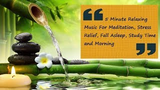 5 Minute Relaxing Music For Meditation, Stress Relief, Fall Asleep, Study Time, and Morning
