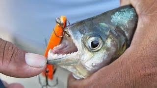 RAZOR SHARP TEETH! (Piranha Fishing with Lures in Amazon River)
