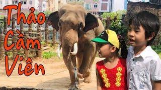 Stin Dâu Đi Thảo Cầm Viên Sài Gòn (^_^) Dạy Bé Tìm Hiểu Về Các Loài Động Vật