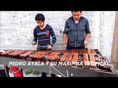 FOTÓGRAFO-VÍDEO FILMACIÓN EN XOCHIMILCO-TLÁHUAC-MILPA ALTA-TULYEHUALCO.