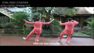 bai tap thai cuc quat 1 hd