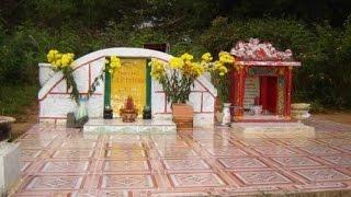 Phía sau đồi thông hai mộ ở Đà Lạt là một thiên tình sử đầy bi thương mà ít người biết đến