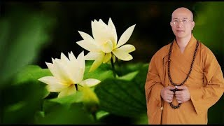 CÁCH GIẢI TRỪ NGHIỆP ÁC - Thầy Thích Trúc Thái Minh