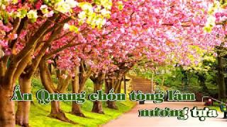 Những ca khúc xúc động về cố nghệ sĩ Anh Vũ