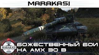 Божественный бой на AMX 30 b, 11 502 урона