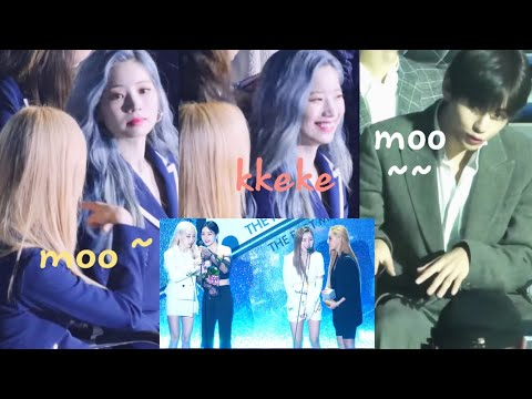 190424 Idols & MAMAMOO (마마무) Interaction/Reaction at The Fact Music Awards (TMA)