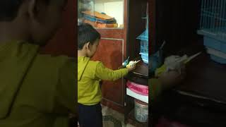 3 year old child feeding bird with his own hand